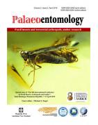Palaeoentomology
